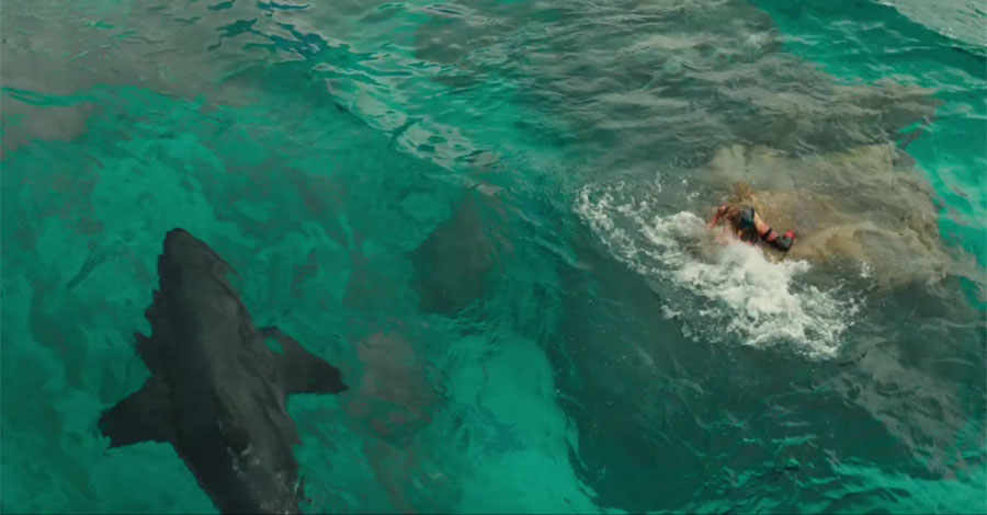 the-shallows - FIlmtipp - Filmtipps.tv